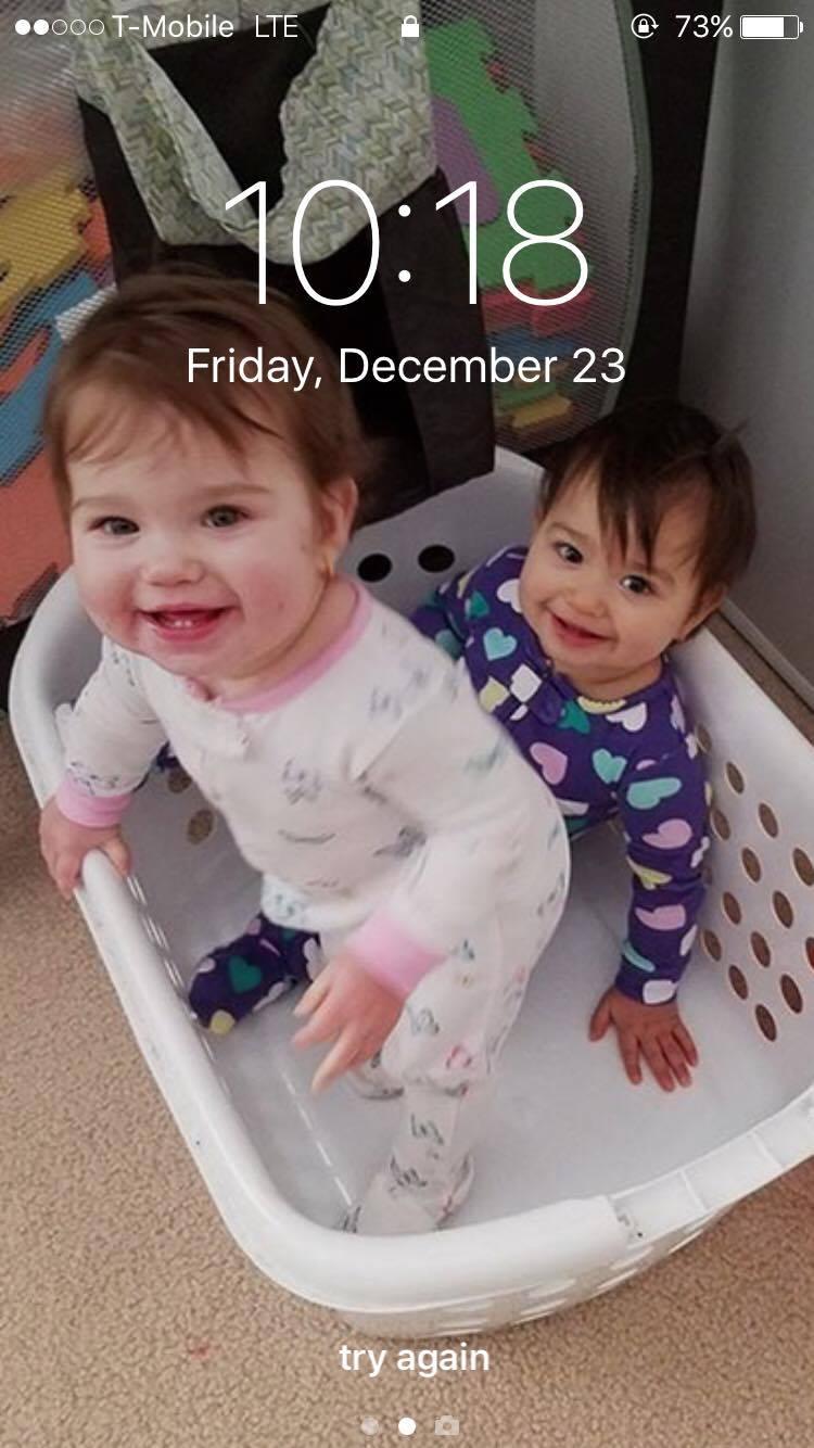 babies-in-a-basket
