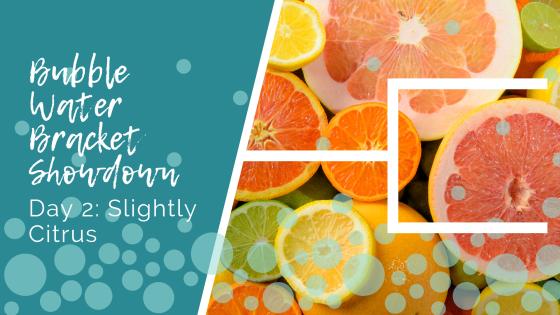 Bubble Water Bracket Showdown Day 2: Slightly Citrus